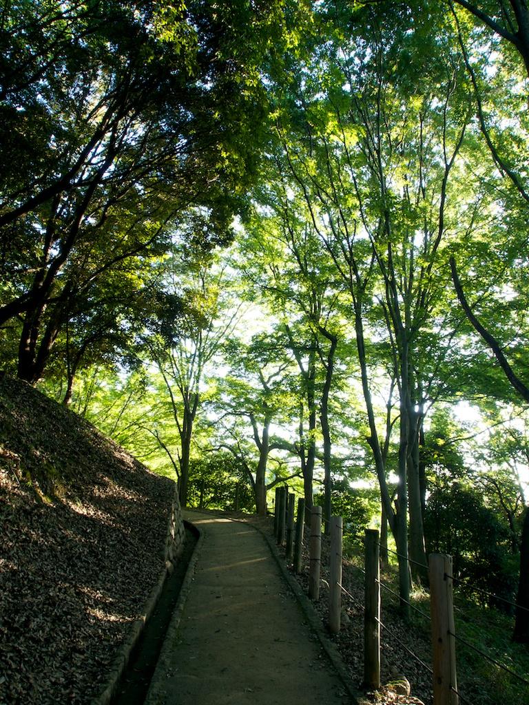 甘樫丘展望台への道